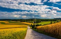 Landweg en mening van rollende heuvels dichtbij Dwarswegen, Pennsyl Royalty-vrije Stock Fotografie