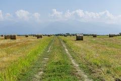 Landweg en ronde strobalen die op de gebieden wachten Stock Foto's