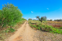 Landweg in het platteland Royalty-vrije Stock Fotografie