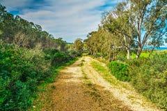 Landweg in het platteland van Sardinige Royalty-vrije Stock Afbeeldingen