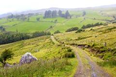 Landweg in Ierland royalty-vrije stock afbeeldingen