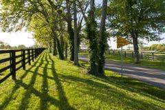 Landweg in Kentucky bij de lente Royalty-vrije Stock Foto