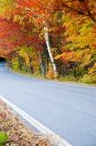 Landweg met het Gebladerte van de Herfst Stock Foto