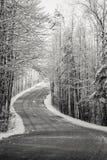 Landweg met Snow-covered Bomen wordt gevoerd die Royalty-vrije Stock Fotografie