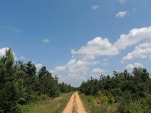 Landweg onder blauwe hemel Royalty-vrije Stock Foto's