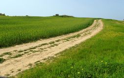 Landweg onder groene heuvels en weiden stock foto's
