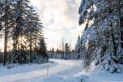 Landweg op een de winterdag Stock Afbeelding