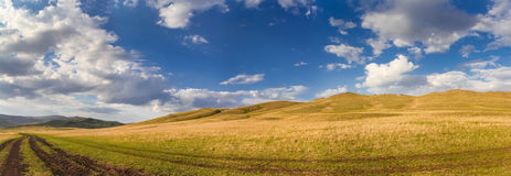 Landweg op gebied met cirkelende toerist royalty-vrije stock fotografie