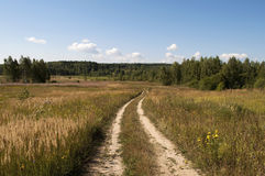 Landweg op het gebied Royalty-vrije Stock Fotografie