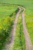 Landweg op het gebied Stock Foto