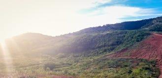 Landweg op landelijke plaats, binnenlands van Pernambuco, Brazilië royalty-vrije stock foto's