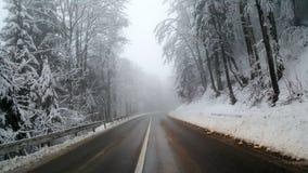 Landweg op mistige de winterdag Royalty-vrije Stock Afbeeldingen