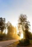 Landweg op mistige zonnige ochtend Royalty-vrije Stock Afbeeldingen