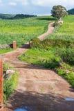 Landweg in Sardinige Stock Afbeelding
