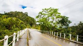 Landweg in Thailand Royalty-vrije Stock Afbeeldingen