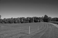 Landweg und -feld im Fall Stockbilder