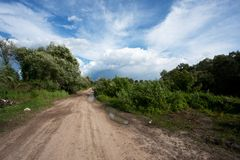 Landweg vlak na de regen Royalty-vrije Stock Afbeelding