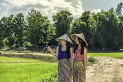 Landwirt lizenzfreie stockfotografie