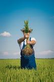 Landwirt auf dem Gebiet Stockfoto