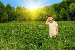 Landwirt auf dem Weizengebiet lizenzfreie stockfotografie