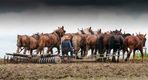 Landwirt auf einem fileld 2 Stockbild