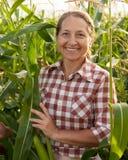 Landwirt auf einem Gebiet Lizenzfreie Stockbilder