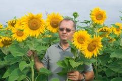 Landwirt auf einem Sonnenblumefeld Stockbild