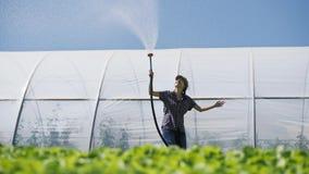 Landwirt bewässert von den Sämlingen Junger hübscher Landwirt, der ihre Arbeit während der Bewässerungssämlinge enjoing ist stock video footage