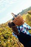 Landwirt Carrying Basket Full von Trauben Lizenzfreies Stockfoto