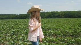Landwirt Child im Sonnenblumenfeld, Mädchen, Kind, das, gehend in landwirtschaftliche Ernte studiert stockbild
