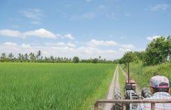 Landwirt, der Ackerschlepper oder Landwirt ` s LKW durch grünes junges Reisfeld am reizenden tropischen sonnigen Tag mit blauem H Lizenzfreies Stockfoto