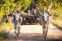 Landwirt, der auf dem Gebiet arbeitet Lizenzfreie Stockfotos