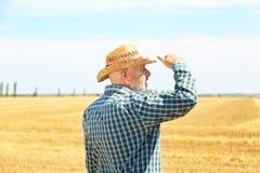Landwirt, der auf dem Gebiet steht lizenzfreies stockfoto