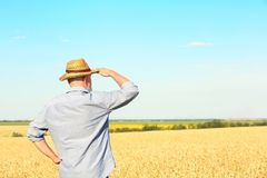 Landwirt, der auf dem Gebiet steht lizenzfreie stockfotografie