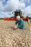 Landwirt, der auf dem Weizengebiet steht stockbild