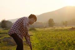Landwirt, der auf einem Landwirtschaftsgebiet mit Weinlese und warmem Ton arbeitet lizenzfreies stockfoto