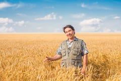 Landwirt, der auf einem Weizengebiet steht stockbild