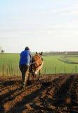 Landwirt, der das Feld, Spanien pflügt Stockbilder