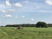 Landwirt, der das Gras mit einem Traktor mäht lizenzfreie stockbilder