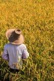 Landwirt, der an dem Land in Asien arbeitet Stockbild