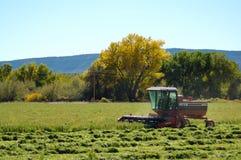 Landwirt, der Feld erntet Stockfotografie