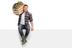 Landwirt, der Gemüse gesetzt auf Platte hält stockbilder