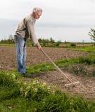 Landwirt, der im Garten arbeitet Stockfotos