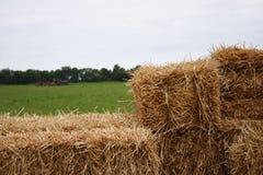 Landwirt, der im Hintergrund pflügt Stockbild