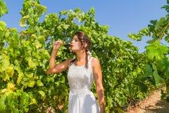Landwirt der jungen Frau schmeckt ein Glas Rotwein Stockfotografie