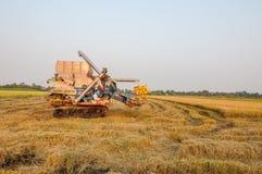 Landwirt, der Reis im Reisfeld mit Ernteauto erntet stockfotos