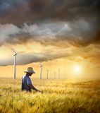 Landwirt, der sein Getreide des Weizens überprüft Stockfoto