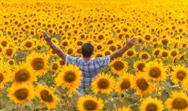 Landwirt, der Sonnenblume betrachtet Lizenzfreie Stockfotos