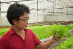 Landwirt in der Wasserkulturaquakultur Lizenzfreies Stockbild