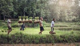 Landwirt des kleinen Jungen und des Mädchens Stockfotografie